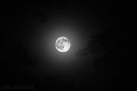 friday the 13th moon 2014